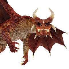 red dragon close up