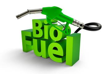 Bio fuel