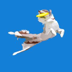 dog-frisbee4