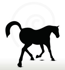 horse silhouette in Prancing position