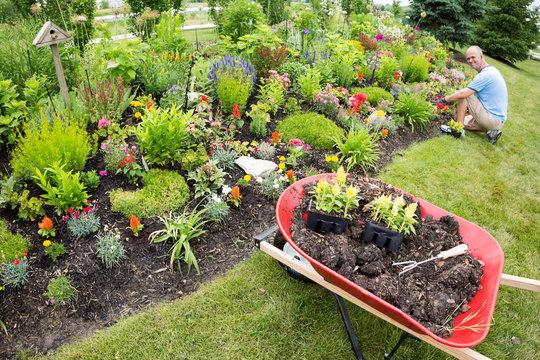 Man planting in the garden