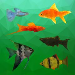 Aquarium Fish in polygon vector style