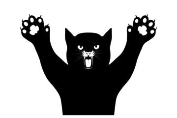 cat's claws scratch a background
