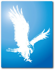 Eagles Bird Vector Clipart Design