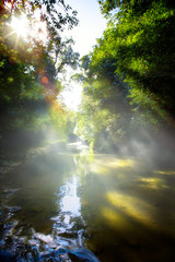 Art beautifu landscape with morning tropical River in jungle
