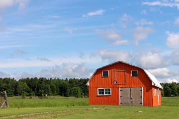Orange barn in a field