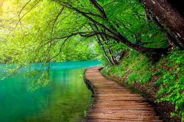 Photo sur Aluminium Bestsellers Crystal clear water and wooden path . Plitvice lakes, Croatia