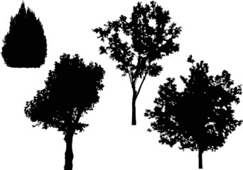 four isolated black trees silhouettes
