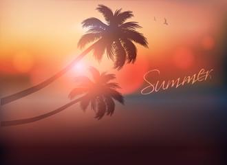 Palm Tree Sunset-Vector Illustration