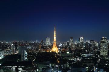 Tokyo cityscape at night, Japan