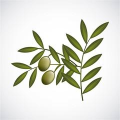 Olives design