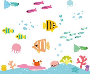 熱帯魚とサンゴの海