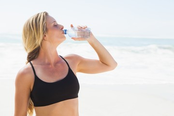 Fit blonde drinking water on the beach