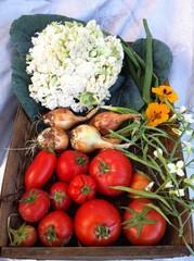 Centro de verduras.