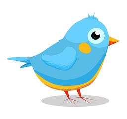 Illustration of cute blue bird