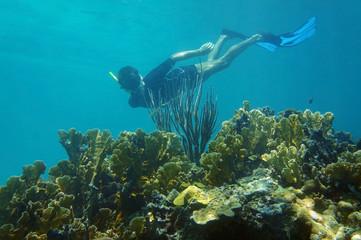 Man underwater snorkeling in a coral reef