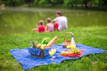 Foto op Plexiglas Picknick Picnic basket with fruits, bread and bottle of white wine