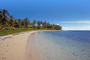 natural caribbean beach