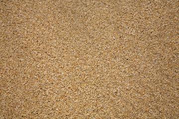 Sand beach texture close up