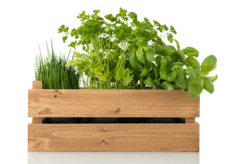 Kitchen herbs in wooden crate