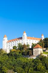 Fotomurales - Bratislava Castle, Slovakia