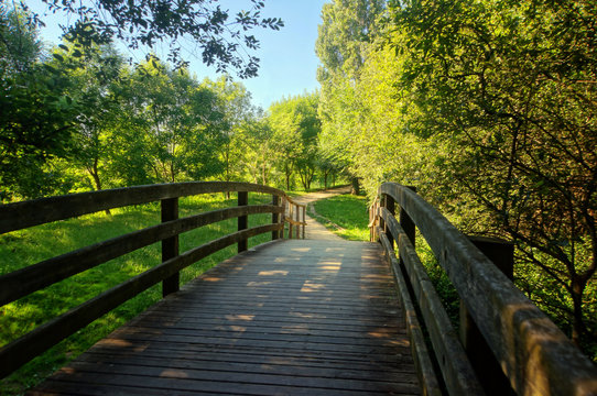 wooden bridge on park