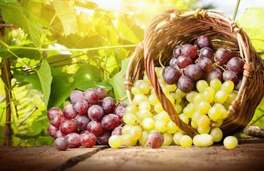 Grapes in a basket Fototapete
