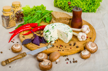 Cheese and spices on the wooden board