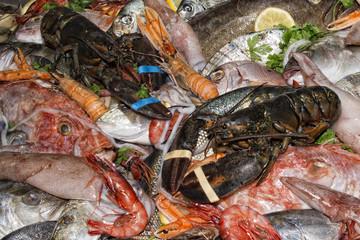 restaurant fresh sea food on display stand