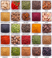Wall Mural - collection of different spices and herbs