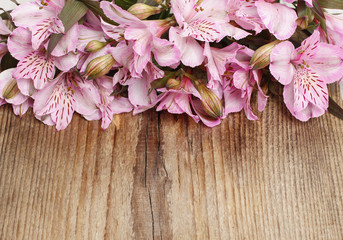 Alstroemeria flowers (Peruvian lily or Lily of the Incas) on woo
