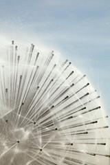 In de dag Fontaine fontaine de jets d'eau en forme de sphère