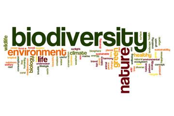 Biodiversity word cloud