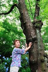 大木から力をもらうシニア女性