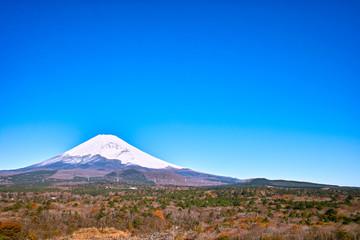 十里木別荘地の紅葉と富士山 Wall mural