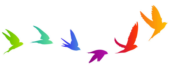 Vogelzug Vektor Silhouette
