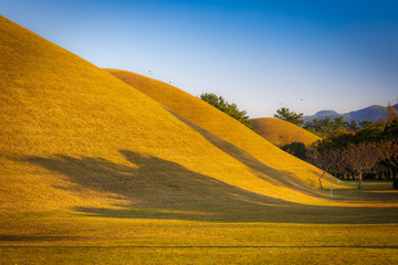 Park on the territory of ancient tombs in Gyeongju