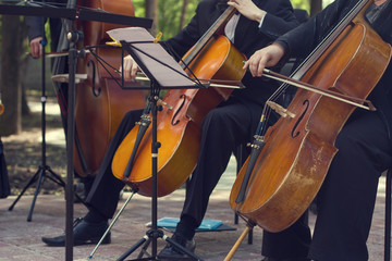 Classical music concert outdoors.