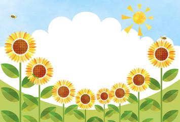 Sunflowers – Field