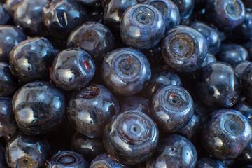 Wild blueberries background