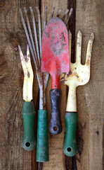Rustic Garden tools on a wooden background.