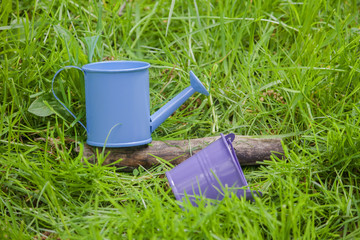 Blue watering can and bucket in grass