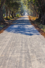 Path to Shwe Yan Pyay Monastery ,Nyaung Shwe   in Myanmar (Burma