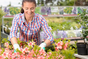 Woman working with potted flowers garden center