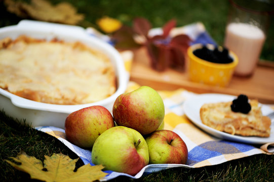 Fall picnic with homemade apple pie