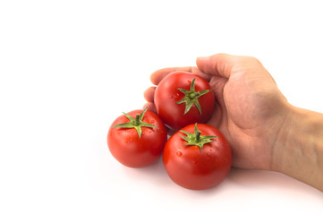 Wall Mural - Three Tomatoes With Hand - Clipping Path Inside