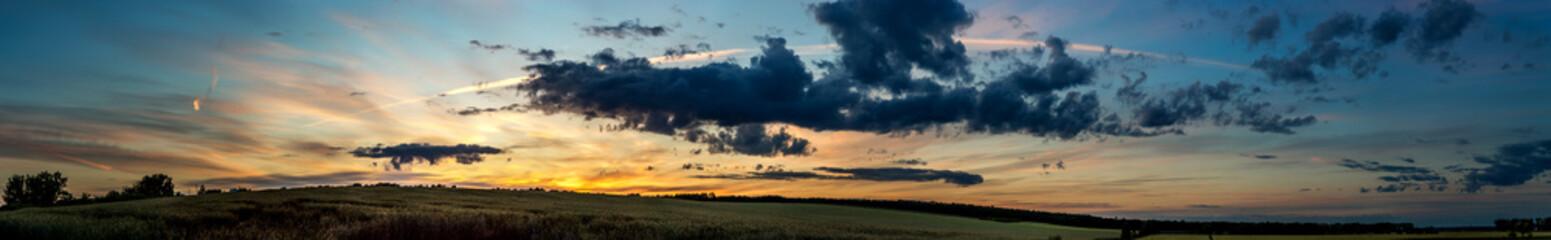Poster Groen blauw wheat field on sunset