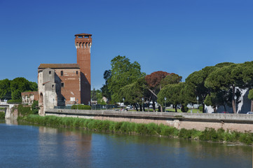 Fototapete - Citadel Tower in Pisa, Italy