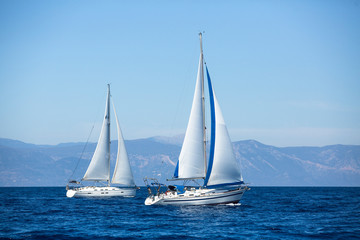 Group of sail yachts in regatta near a coast.
