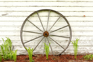 Antique Wooden Wagon Wheel on Rustic White Background